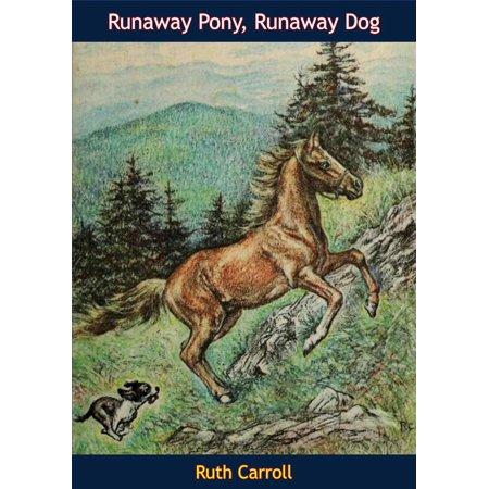 Runaway Pony, Runaway Dog - eBook