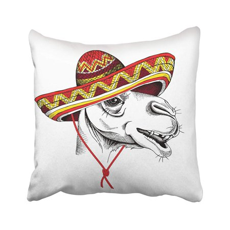 ARHOME Head Camel Portrait in Mexican Hat Accessory Africa America Animal Arabian Cool Pillow Case Pillow Cover 20x20 inch Throw Pillow Covers
