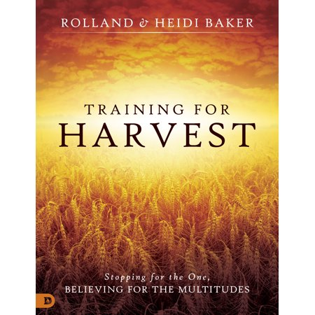 Training for Harvest : Stopping for the One, Believing for the (Multitudes Multitudes In The Valley Of Decision)