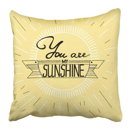 BOSDECO All Vintage with Hand Lettering and You Are My Sunshine This As and Bags Blackboard Border Cute Day Pillowcase 18x18 inch - image 1 de 1