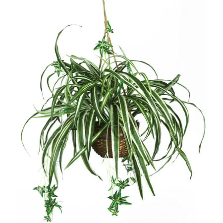 Nearly Natural Spider Hanging Basket Silk Plant