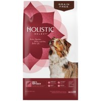Holistic Select Natural Grain Free Dry Dog Food, Adult & Puppy Salmon, Anchovy & Sardine Recipe, 24-Pound Bag