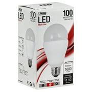 BULB LED N/DIM A21 1600 LUMENS
