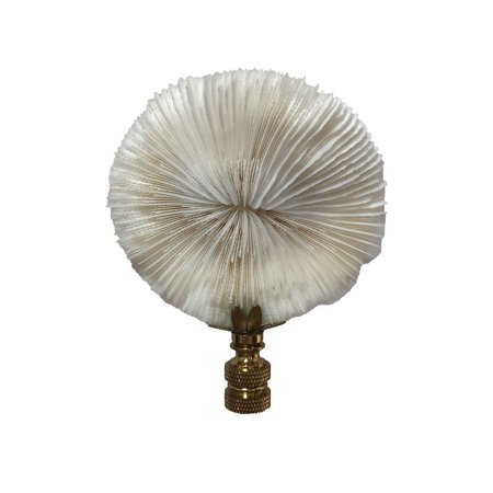 Royal Designs Natural Coral Lamp Finial, White Mushroom Coral on Polished Brass Base