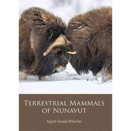 Terrestrial Mammals Share 55