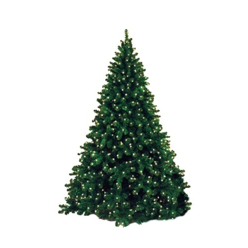 Queens of Christmas WL-TRNAT-09-LWW 9ft Artificial Tips Natural Appearance Needles