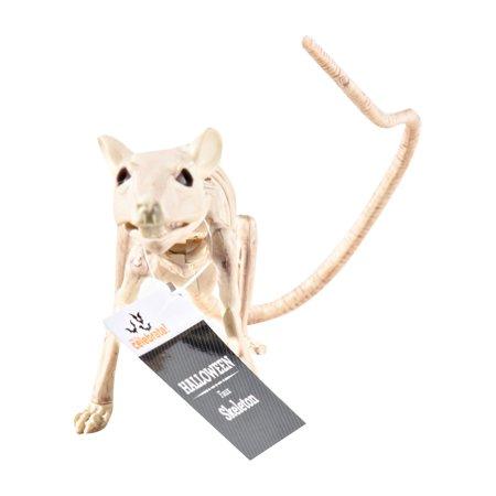 Official Crazybonez Faux Rat Skeleton