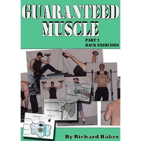 Guaranteed muscle part 2: Back exercises - eBook