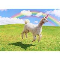Avanti Press Alpaca Unicorn Funny Birthday Card