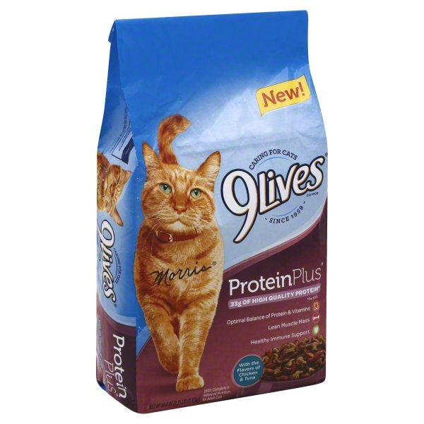 9Lives Protein Plus Dry Cat Food, 3.15 lb