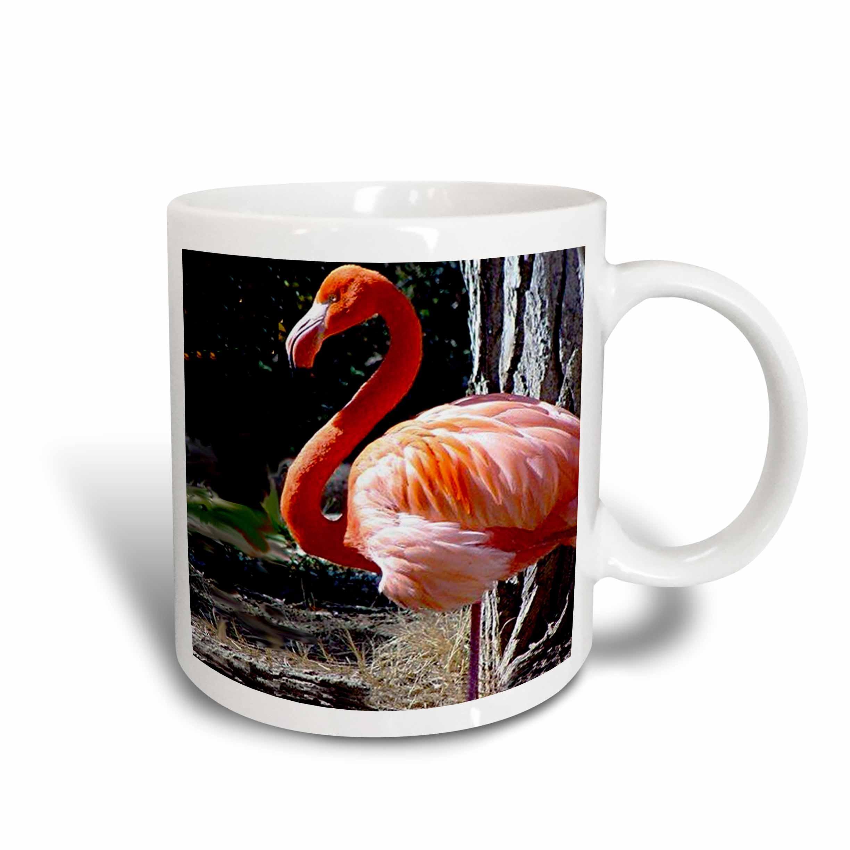 3dRose Flamingo, Ceramic Mug, 11-ounce