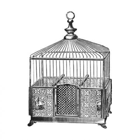 Etchings Birdcage - Pyramidal top patterned base Poster Print by Catalog Illustration ()