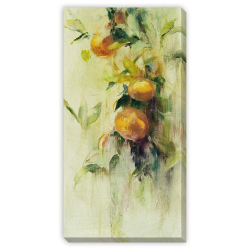 Gallery Direct Golden Fruit Study III Canvas Gallery Wrap