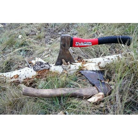 Canvas Print Wood Chop Ax Log Tree Stump Hack Blade Axe Stretched Canvas 10 x