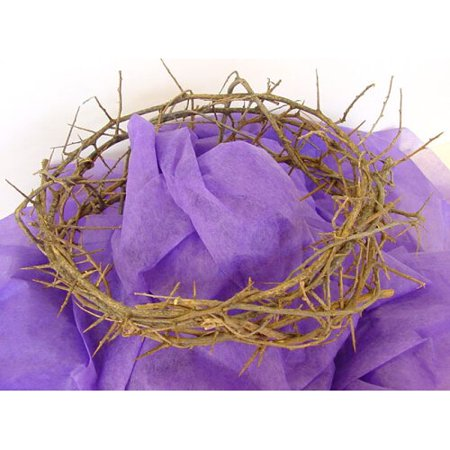Authentic Crown of Thorns- Real Life Size
