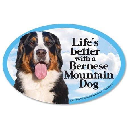 Bernese Mountain Dog Oval Dog Magnet for Cars (and fridges