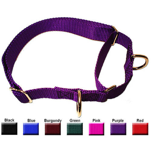 Majestic Pet 10'' - 16'' Adjustable Martingale Collar in Multiple Colors Fits Most 10-45 lbs Dogs