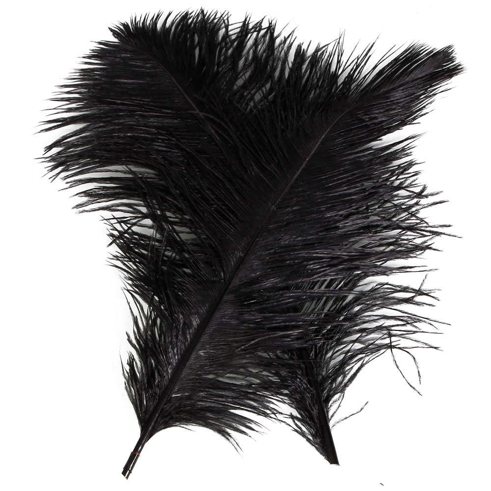 "Zimtown 10 Pcs Nature Ostrich Feather Hair Festive Dcor Home Party Dcor 4""-18"" White Black"