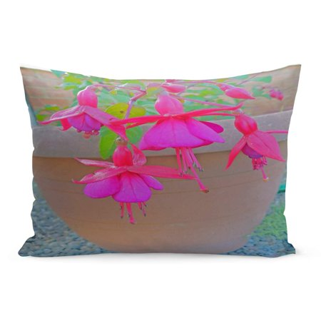 ECCOT Bloom Red Beautiful Flowers in Pots Pink Fuschia Beauty Pillowcase Pillow Cover Cushion Case 20x30 inch ()