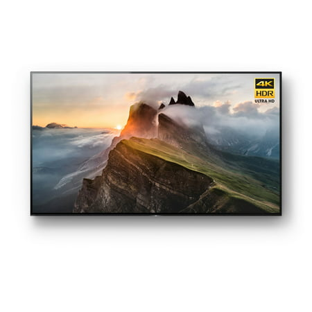 "Sony 65"" Class 4K (2160P) Smart OLED TV (XBR65A1E)"