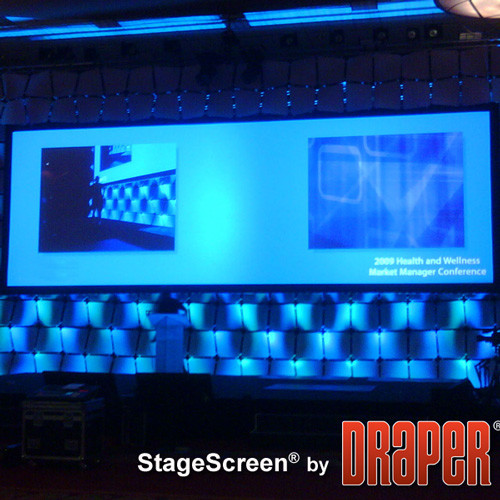 Draper StageScreen Cineflex Portable Projection Screen