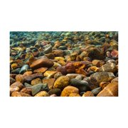 Penn-Plax Lenticular Background-LB3, Lenticular Background- River Rock 20 3-D Depth-Fits 20 Gal Tank. By Penn Plax