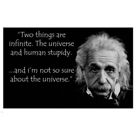 Albert Einstein Human Stupidity Quote Poster 24X36 Funny Inspirational - Inspirational Funny Posters