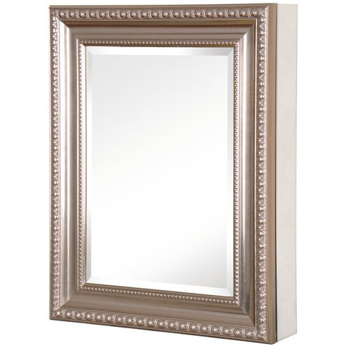 20 In X 26 In Recessed Or Surface Mount Mirrored