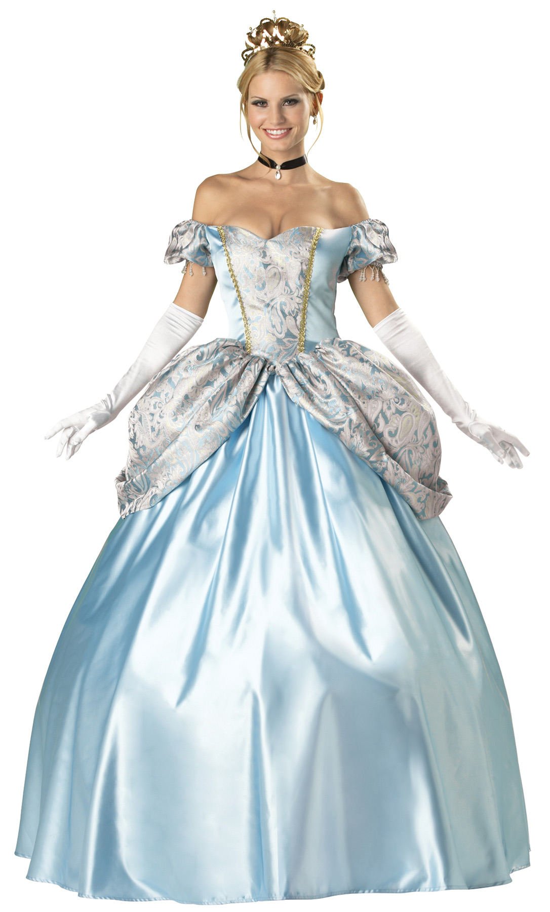 Adult Womens Cinderella Enchanted Princess Blue Enchanting Dress ...