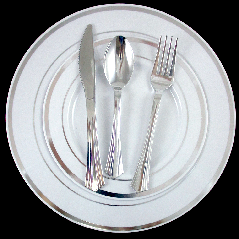 120 People Dinner Wedding Disposable Plastic Plates Party Silverware Silver Rim by PRIDE PRODUCTS