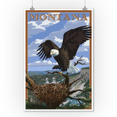 Montana - Eagle Perched - Lantern Press Artwork (9x12 Art Print, Wall Decor Travel Poster)