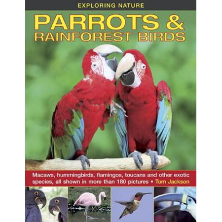 Exploring Nature: Parrots & Rainforest Birds : Macaws, Hummingbirds, Flamingos, Toucans and Other Exotic Species, All Shown in More Than 180 - Rain Bird Quarter Circle