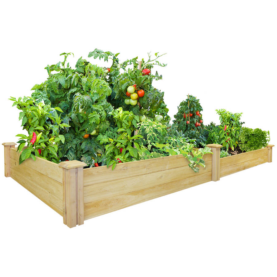 """Greenes Fence 4' x 8' x 10.5""""-7"""" Cedar Raised Garden Bed by Greenes Fence Company Inc"""