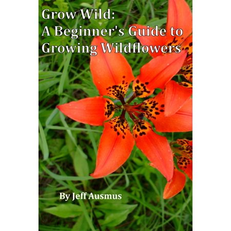 Grow Wild: A Beginner's Guild to Growing Wildflowers - - Growing Wildflower