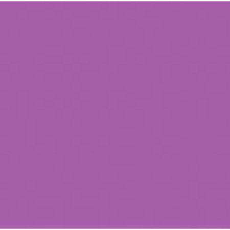 Foamies Extra Thick Foam Sheet - Purple - 6Mm Thick - 9 X 12 Inches