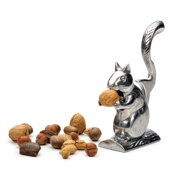 RSVP International Nutty Squirrel Nutcracker