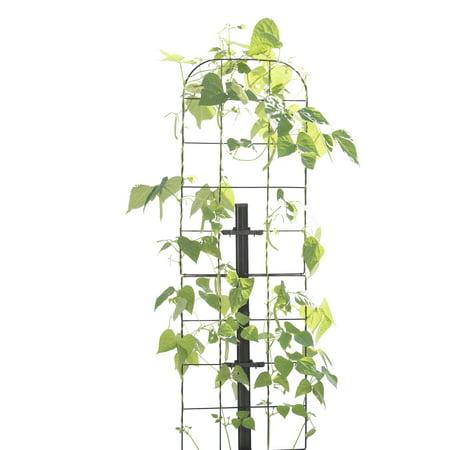 Gardener's Revolution Vine Trellis ()