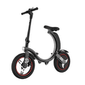 GoPower 350W Folding Electric Bicycle