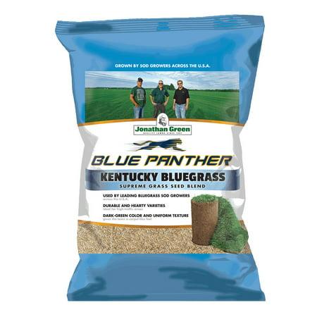 Jonathan Green 11982 Sod Maker Kentucky Blue Grass Seed Mix, 25