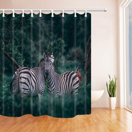 ARTJIA Wildlife Animal Safari Wild Nature Zebras in Jungle Polyester Fabric Bath Curtain, Bathroom Shower Curtain 66x72 inches](Wild Zebra)