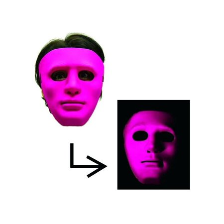 Scary Gonzo Mask