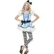 Amazing Alice Child Halloween Costume