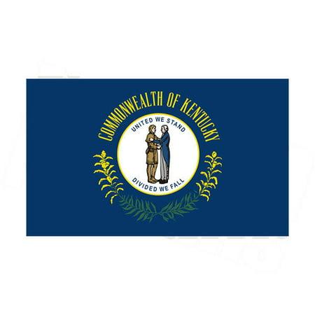 Kentucky State Flag 3