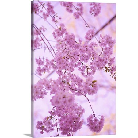 "Great BIG Canvas | ""Bright Blooms IV"" Canvas Wall Art"