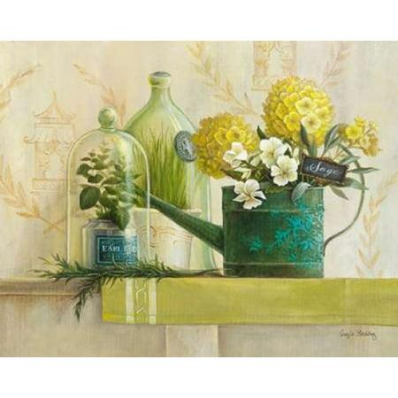 English Sage Canvas Art - Angela Staehling (20 x 24)