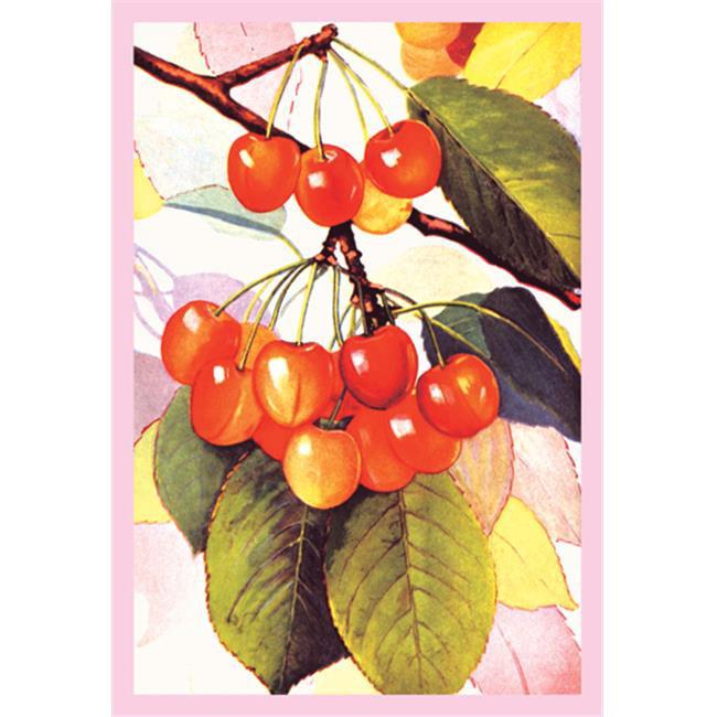 Buy Enlarge 0-587-08637-8P12x18 Cherries- Paper Size P12x18