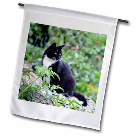 3dRose Beautiful Female Tuxedo Cat Polyester 1'6'' x 1' Garden Flag