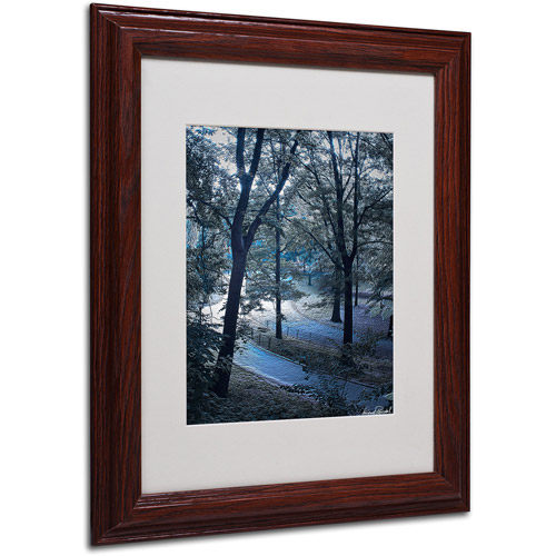 """Trademark Fine Art """"Snow Flakes"""" Matted Framed Art by Miguel Paredes"""