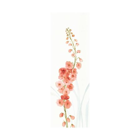 Rainbow Seeds Flowers VII Coral Print Wall Art By Lisa