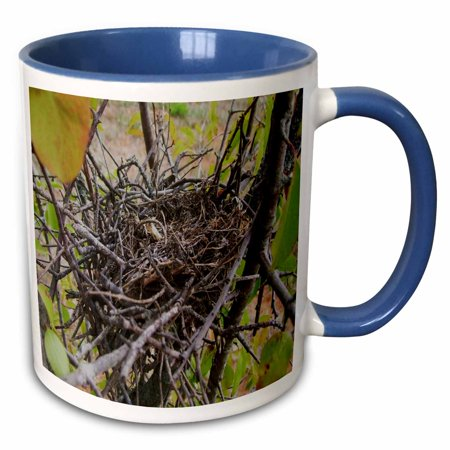 3dRose Empty Bird Nest - Two Tone Blue Mug, (Empty Mug)